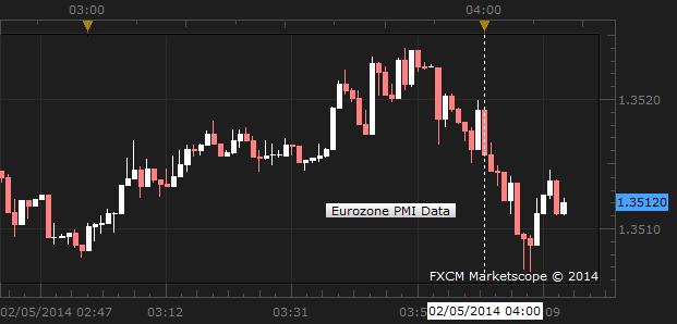 Euro Sinks as Eurozone PMI Data Disappoints
